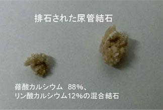 %e7%b5%90%e7%9f%b31